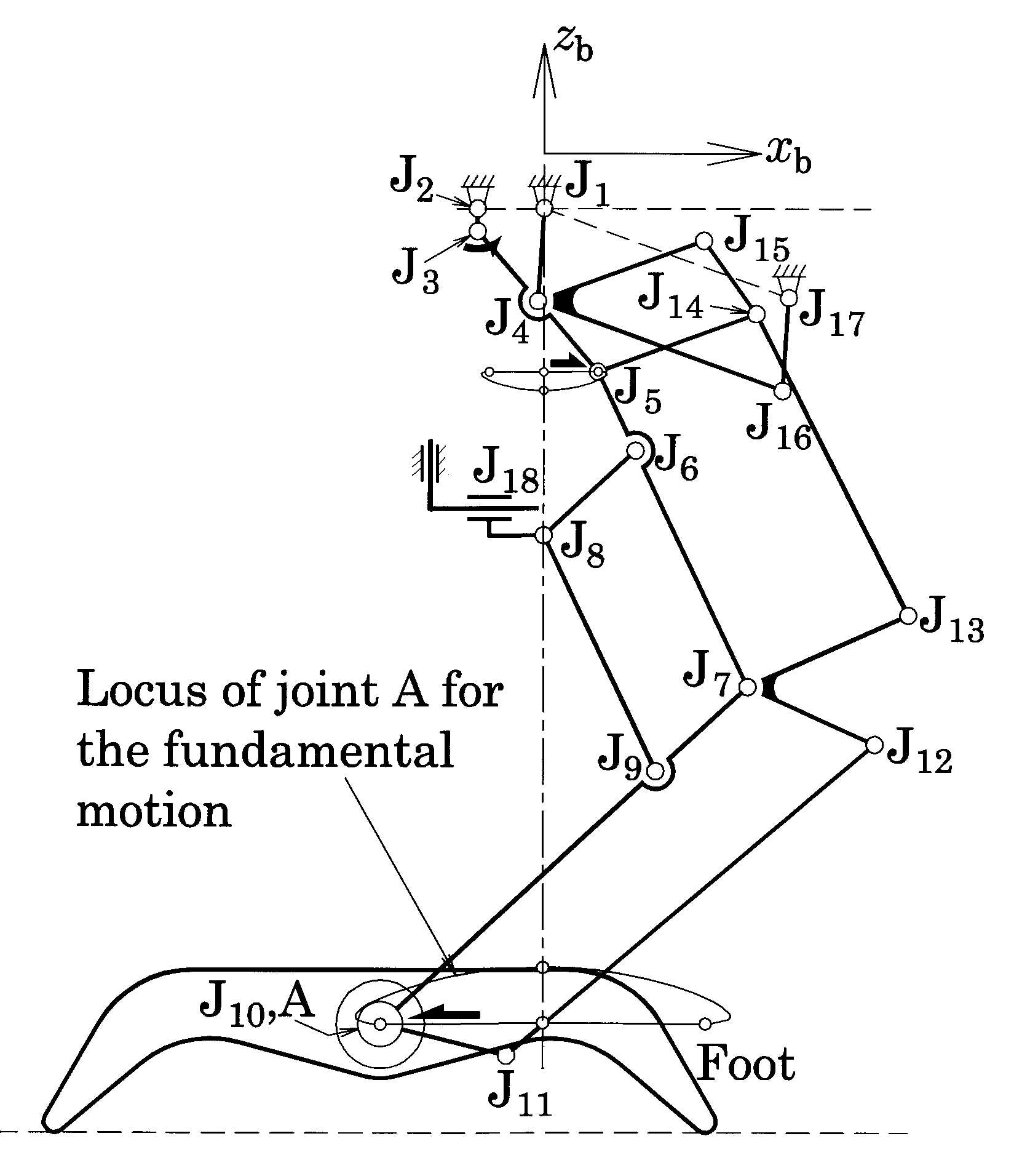 Composition of the Leg Mechanism